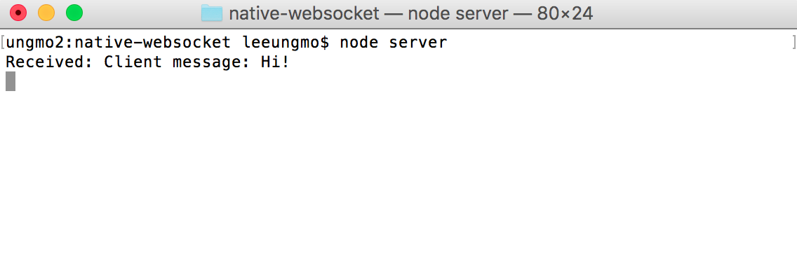 native-websocket-server